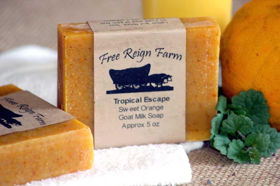 Tropical Escape Goat Milk Soap
